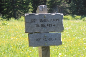 High Prairie Trail, Mt. Hood